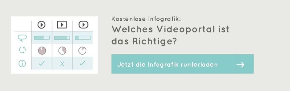 Videoportal-Check