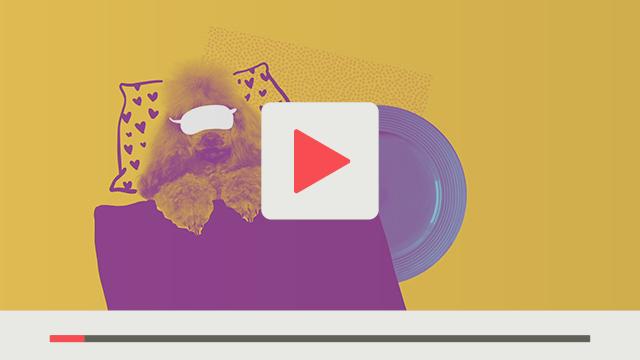 textzeichnerin Premium Video